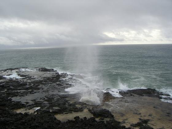 首页 旅游景点大全 北美洲 美国 夏威夷 茂宜岛
