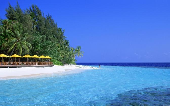 椰子岛图片大全