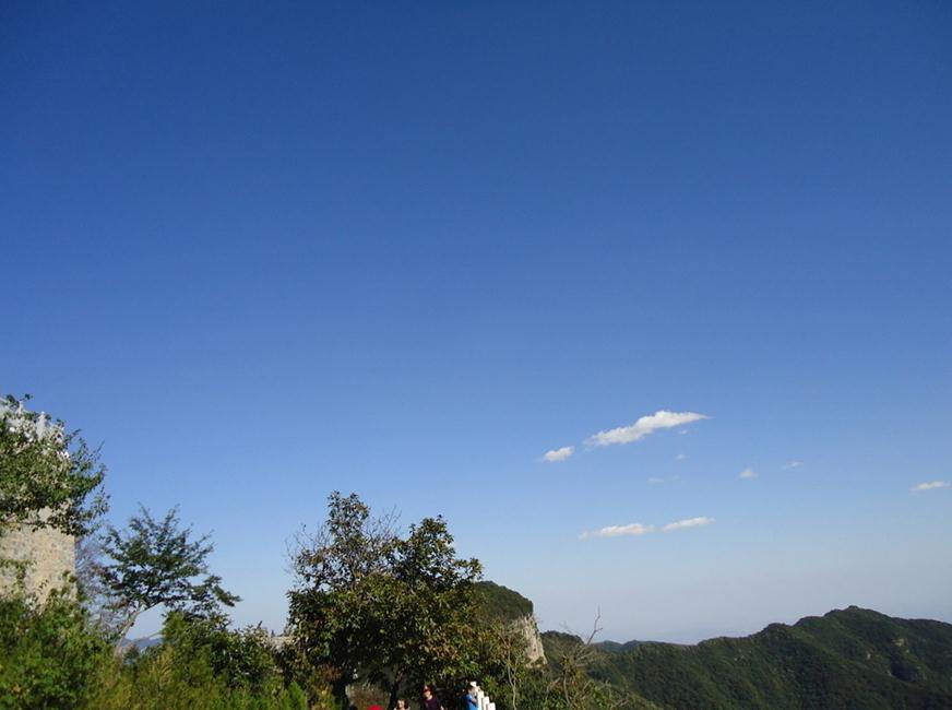 动植物荟萃之地---森林公园等旅游项目