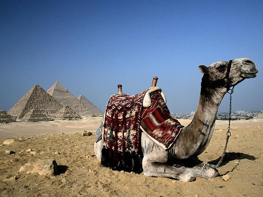 即世界七大奇观之一的金字塔(点击右图放大