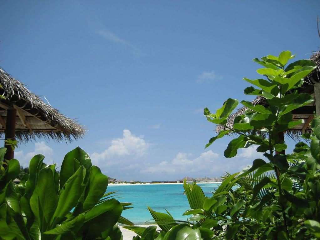 梦幻岛是斯里兰卡chaaya酒店旗下的四星度假岛,dhonveli在马代土语里