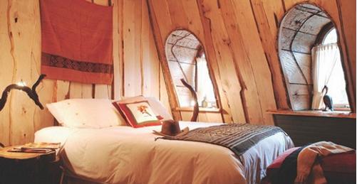 智利洗浴_智利最好的水帘洞旅馆 住一晚400美元