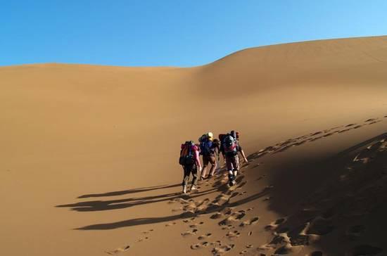 旅游资讯  旅游  资讯详情               库姆塔格沙漠风景名胜区