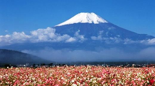 游静冈,看最具特色的日本