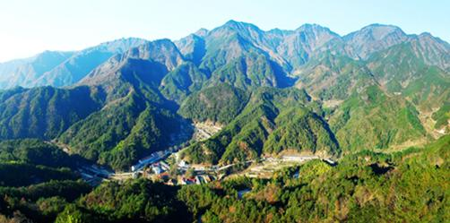 山水文化旅游节启航茶油再展风姿