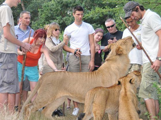 纵横肯尼亚10天动物大迁徙之旅(ek)