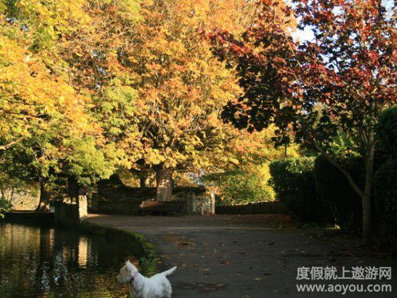 随后沿着湖边花园悠闲漫步到美丽的上校农庄.乘船返回皇后镇.