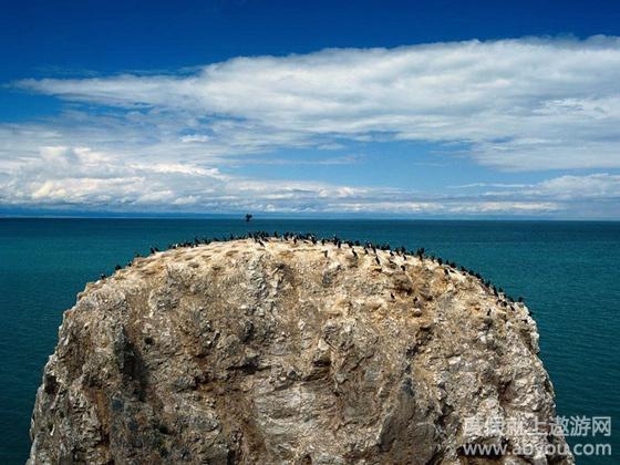 青海湖—金银滩—西宁--返程