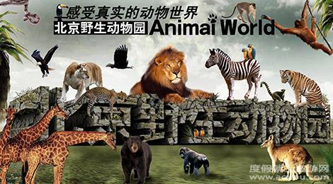 """置身于""""森林——动物""""环境之中,达到与自然的最佳融合."""