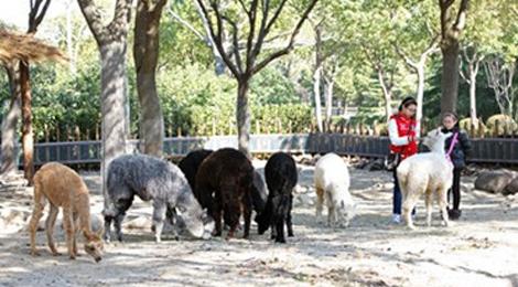 上海野生动物园