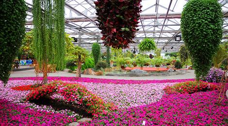 世界花卉大观园的室外景观由十五个花园广场组成.