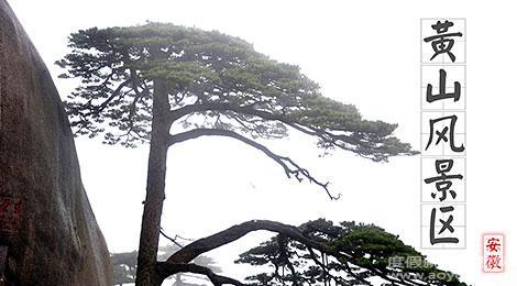 安徽黄山风景区简介_安徽黄山风景区介绍